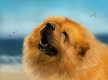 Chow Chow - Digital Dog Pet Portrait
