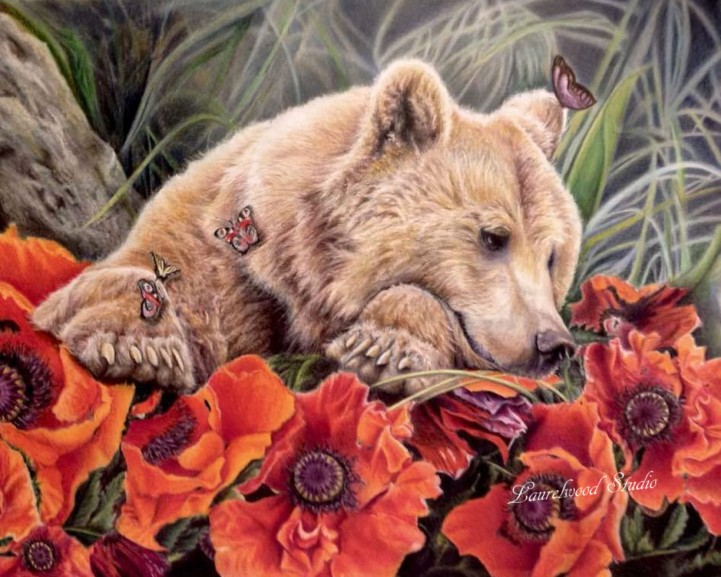 Bear and Poppies - Colored Pencil Wildlife Painting